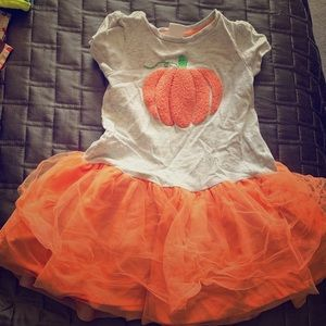 Girls size 2t fall dress